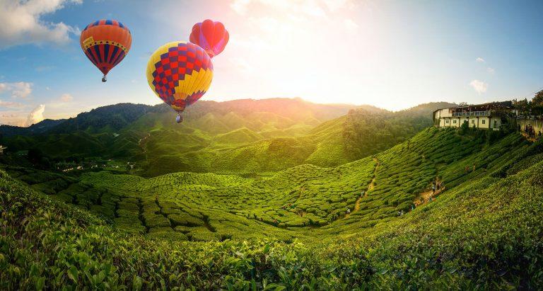 تعرف على مرتفعات الكاميرون في ماليزيا الساحرة