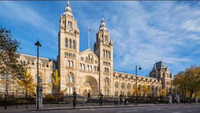 اشهر 20 من متاحف لندن انجلترا المجانية التي يجب ان تزورها